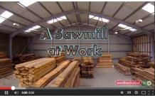 a sawmill at work.the movie by woodlands tv