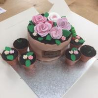 Graham's Birthday Cake shaped like flowerpots all boxed up with somewhere to go