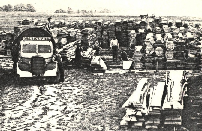Cocking Sawmill history. The air dried yard with beech stacks