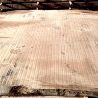 enormous dimension cedar of lebanon waney edge boards air drying for furniture makers