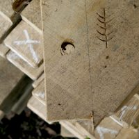 Downland Workshops marking and scribing details for oak jointing with hand tapered pegs