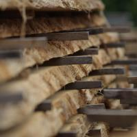 air dried waney edge boards stacked in boules for drying