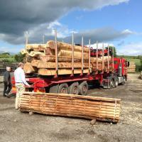 Tom inspecting Brian Harman's round timber lorry delivering in fresh sawn boules