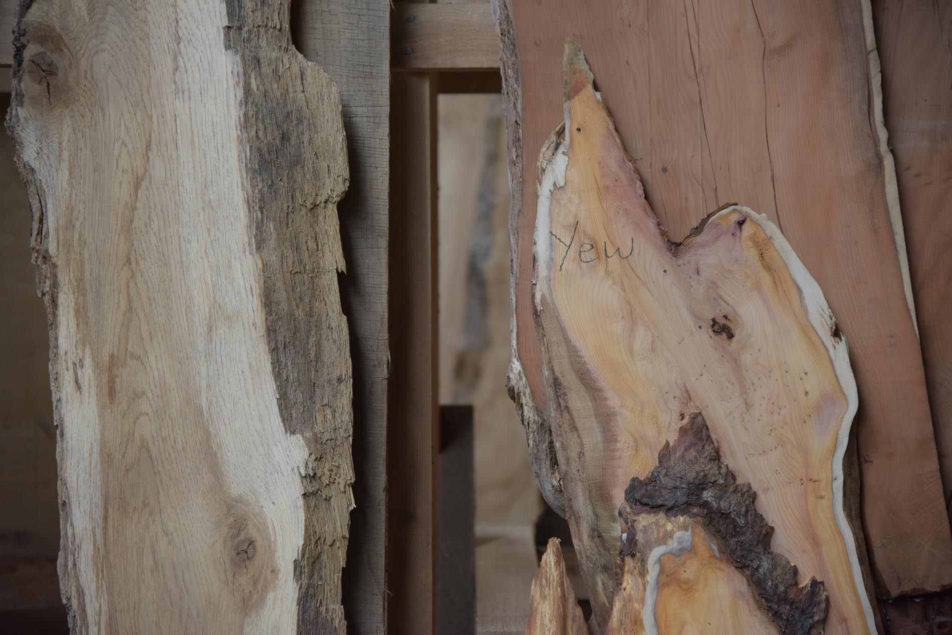 yew and oak waney edge boards sit next to each other in the woodyard timber rack