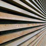 French motorway services Building with Larch strip cladding