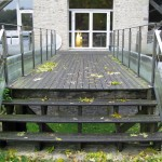 Mont D'Hor at St Thierry. Timber decking and steps, complete with leaves
